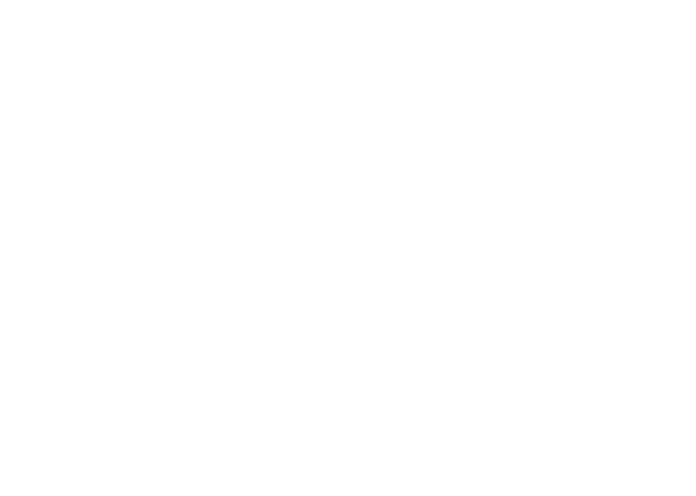 Logo BLACK FOREST CODE